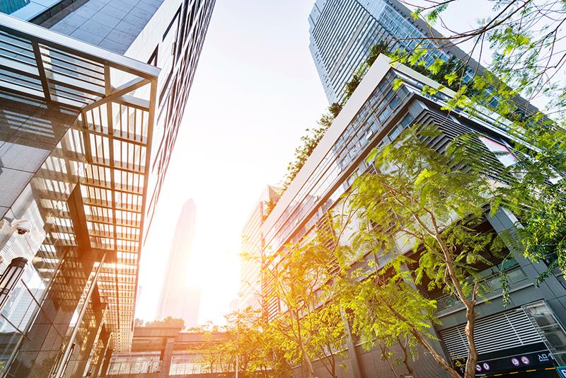 A gestão da sustentabilidade vai além da produção anual de relatórios.